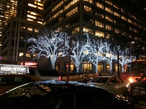Lighted trees in NYC