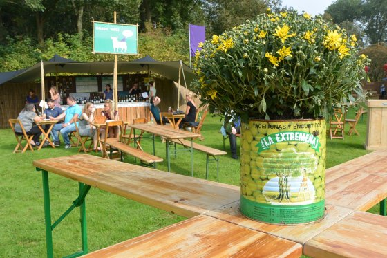 The festival had different kinds of seating/standing areas and each wine store was labels with the greenish signs.